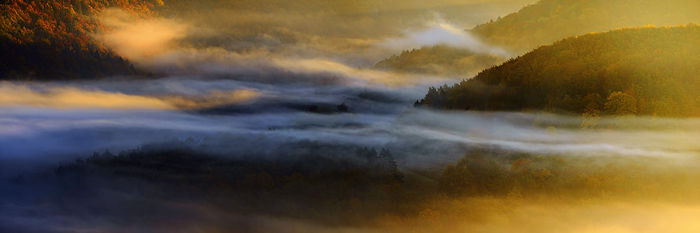 Photograph mystic morning by Martin Amm on 500px