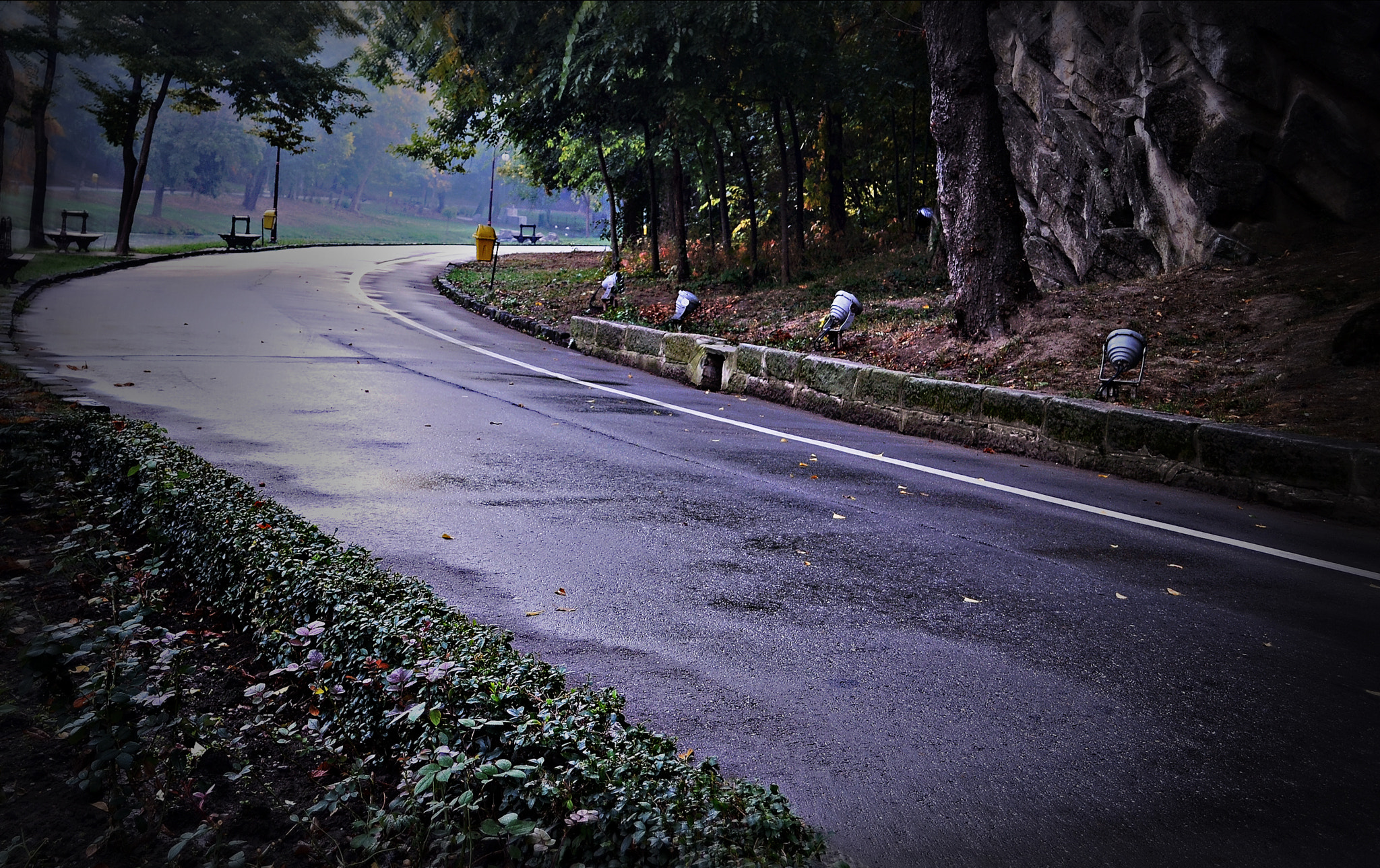 Photograph Road by Toni Oprea on 500px