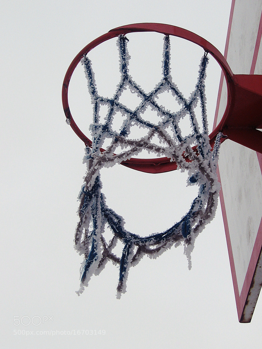 Photograph Basketball is a Life Style by Tavananna Arinna Potter on 500px