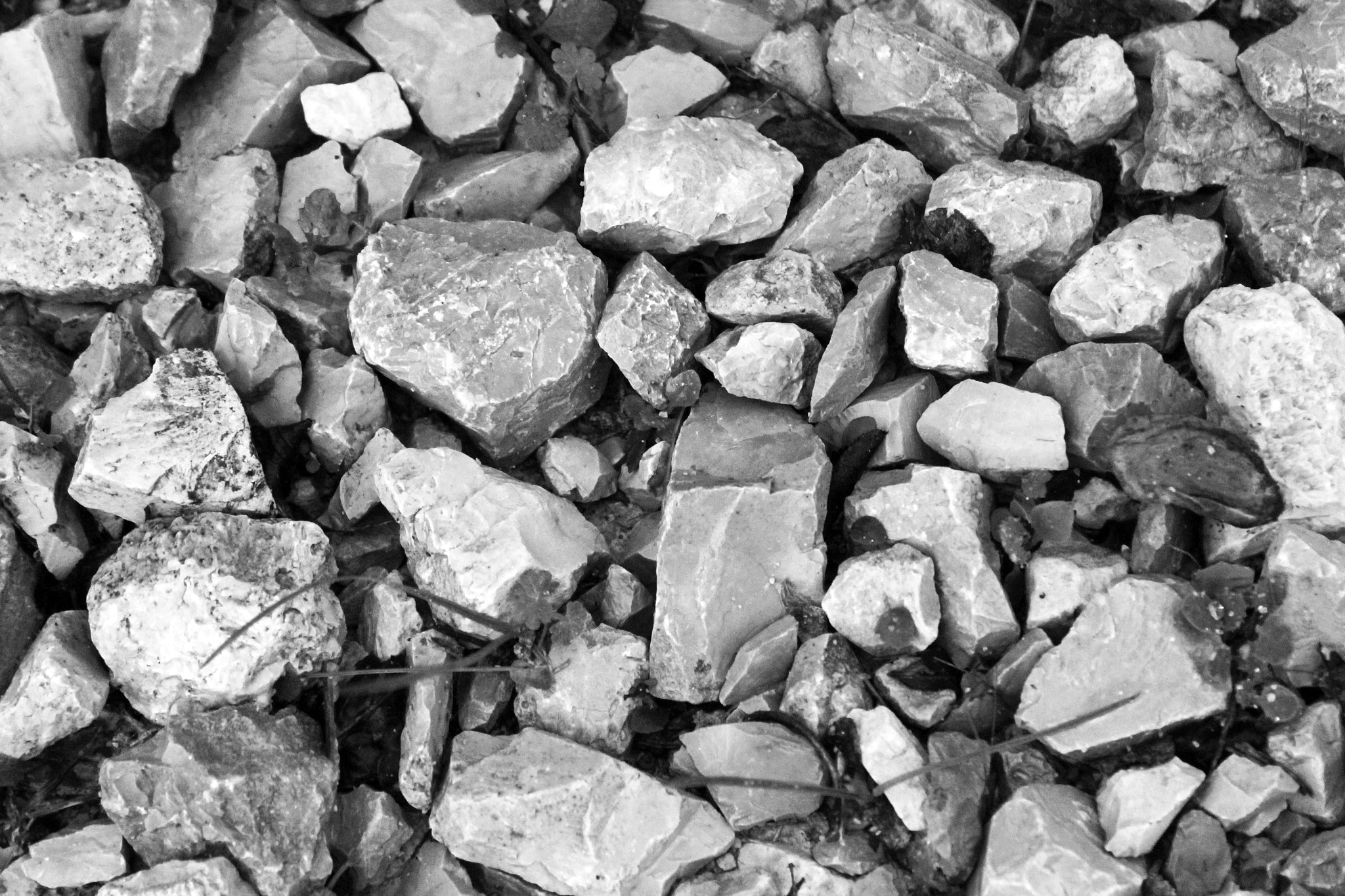Photograph stones by Jessica Ramos on 500px