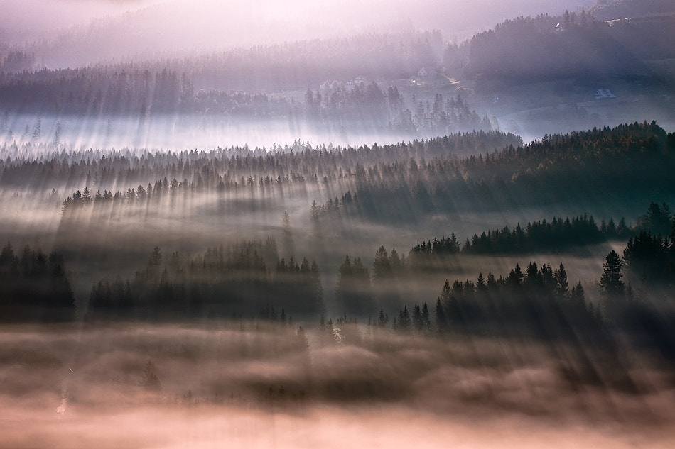 Photograph The first rays ... by Boguslaw Strempel on 500px