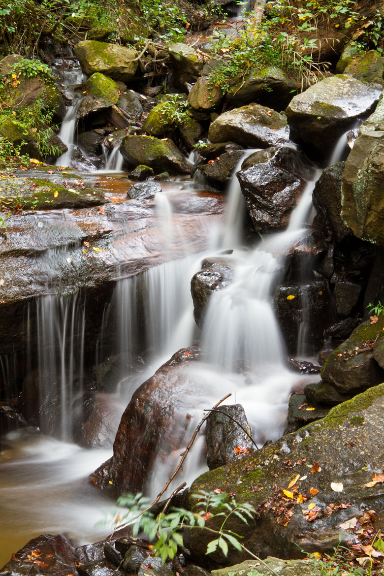 Photograph Small Fall on Little Amicalola Creek Lower by Candice Pinzon on 500px