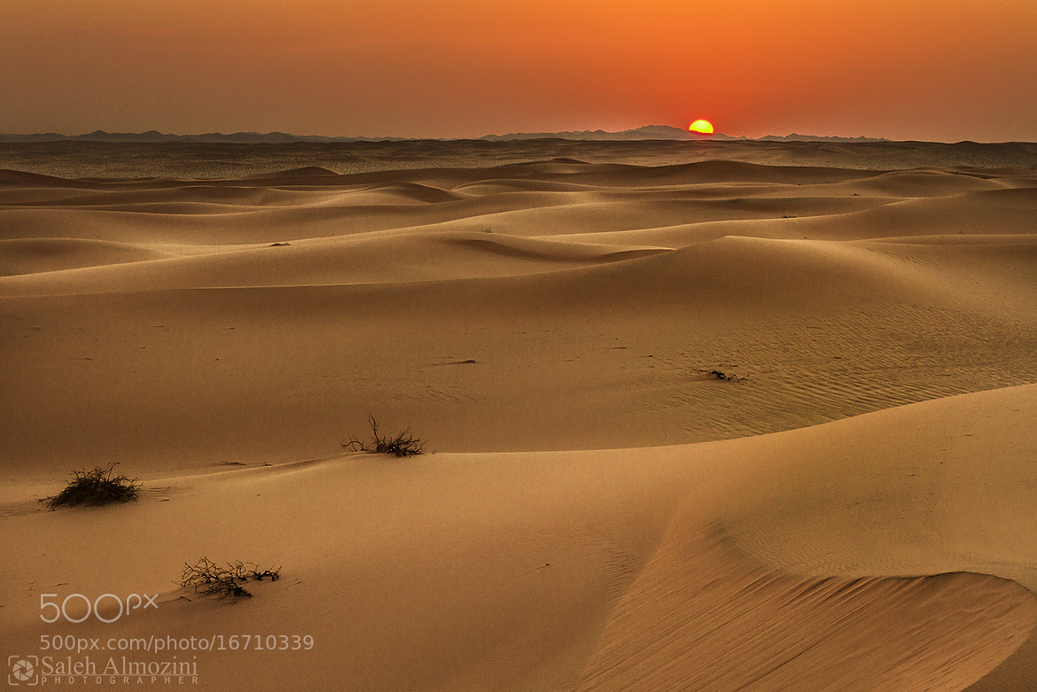 Photograph The desert of Saudi Arabia by saleh almozini on 500px