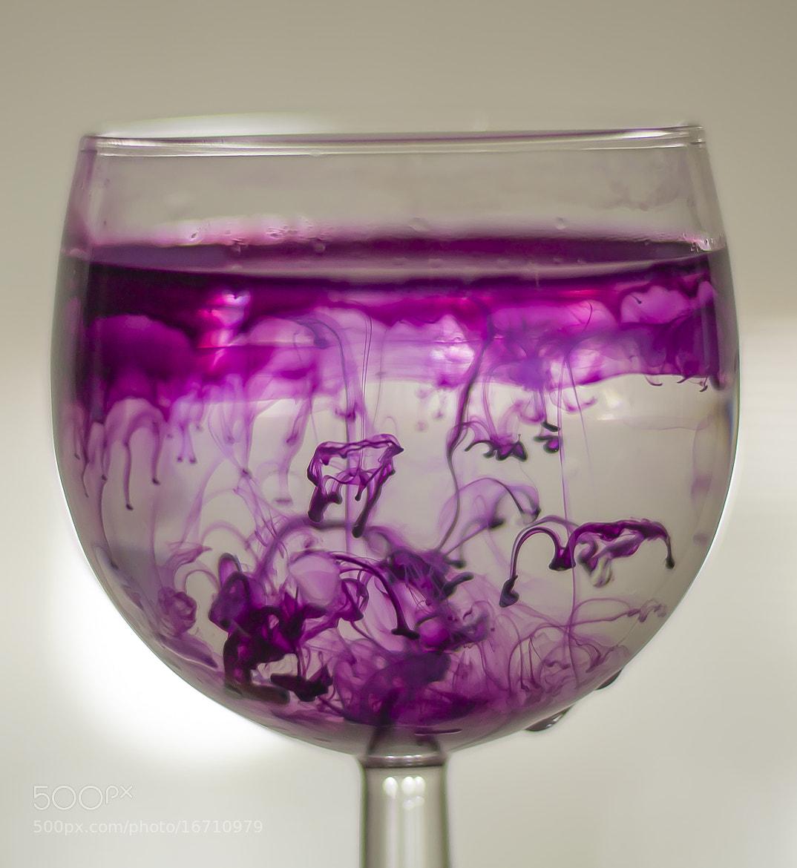 Photograph Purple by Marco Di Egidio on 500px