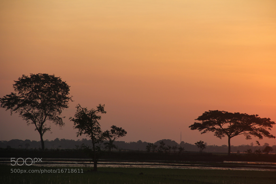 Photograph The light of Sundown by Yusuf Tamami on 500px