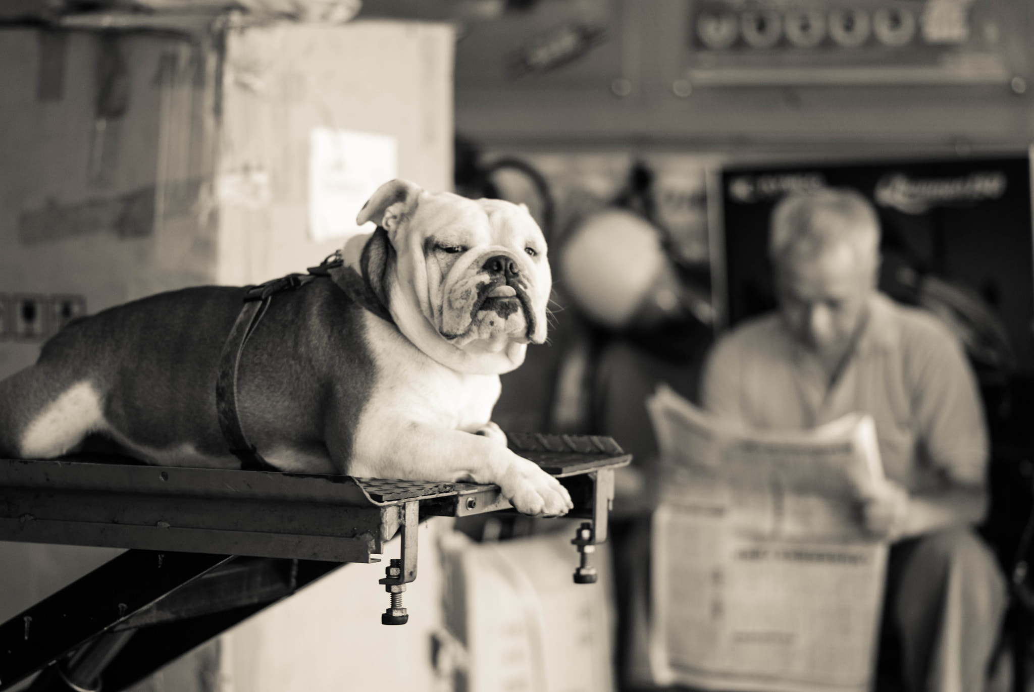 Photograph Whatchu' lookin at by Viktor Chan on 500px