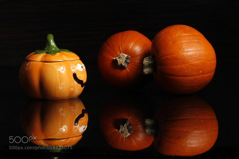 Photograph Pumpkin conference by Cristobal Garciaferro Rubio on 500px