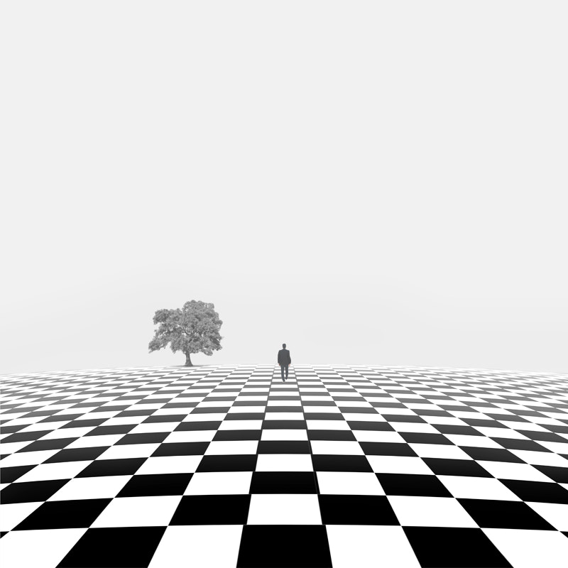 Photograph Player in the game of life by Hossein Zare on 500px