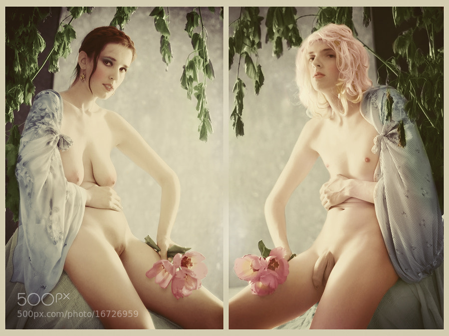 Photograph Untitled by Grisha Selivanov on 500px