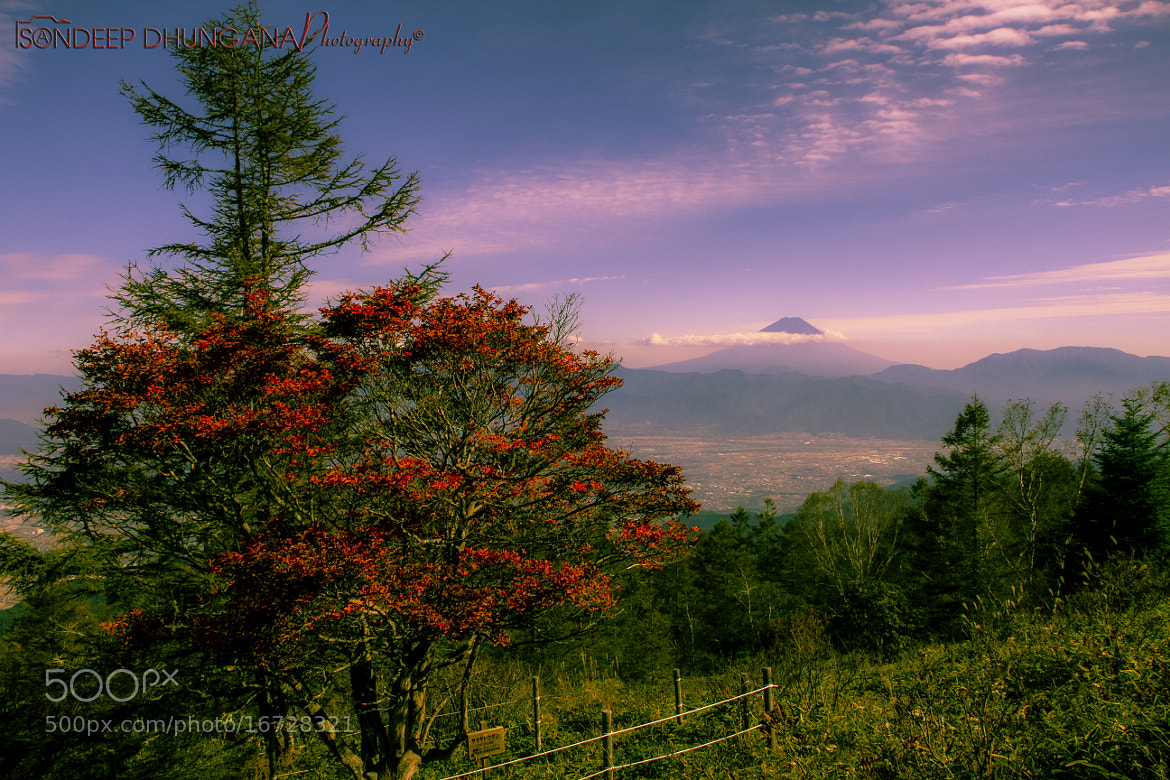 Photograph Mt. Fuji before Autumn by SANDEEP DHUNGANA on 500px