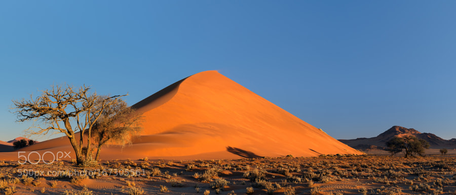 Dune 40 at sunset