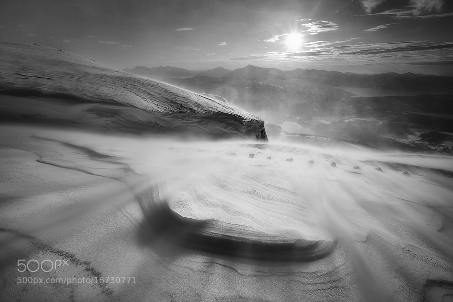 Photograph Windswept by Arild Heitmann on 500px