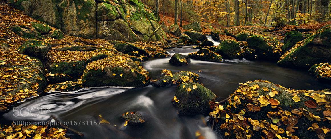 Photograph Fall & Flow by Kilian Schönberger on 500px