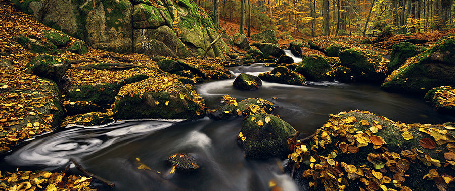 Photograph Fall & Flow by Kilian Schönberger on 500px