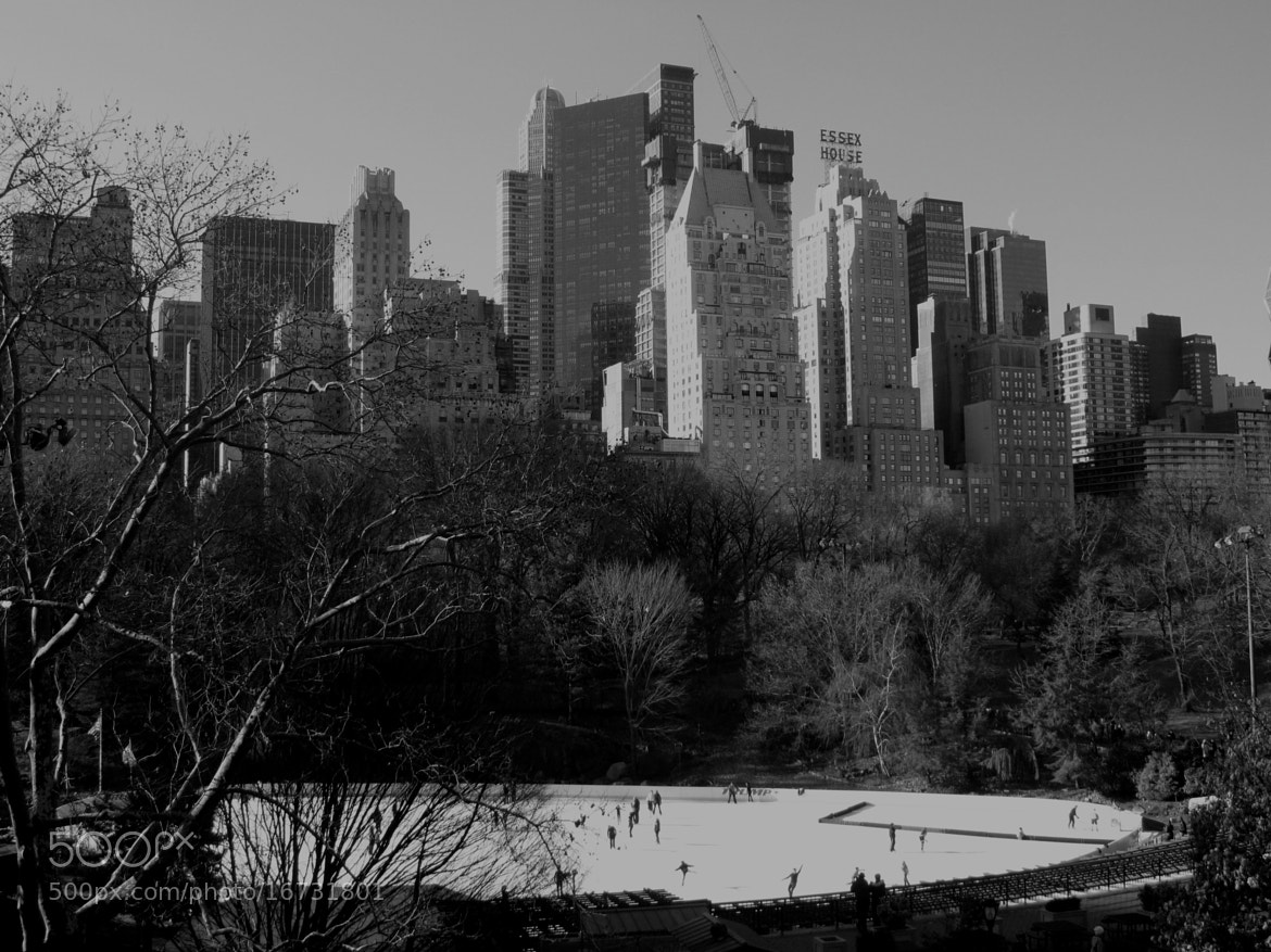 Photograph Central Park NYC by Audrey H on 500px