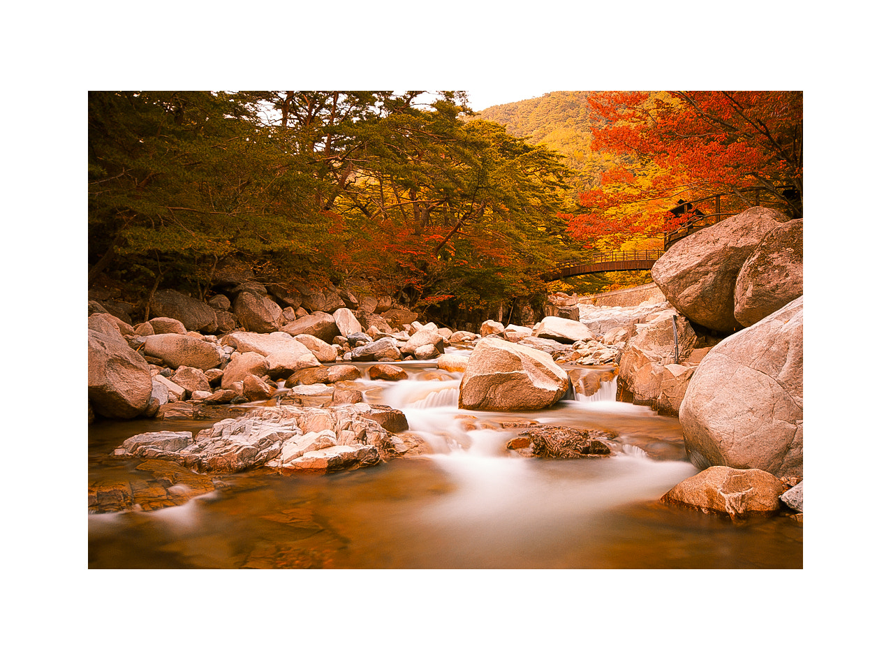 Photograph Gaya Mountain National Park by LEE GEON on 500px