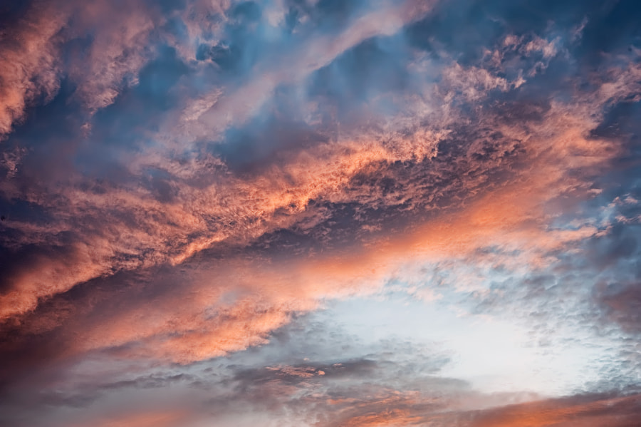 You can purchase this photo here:  http://fineartamerica.com/featured/pink-clouds-and-blue-sky-scott-norris.html.