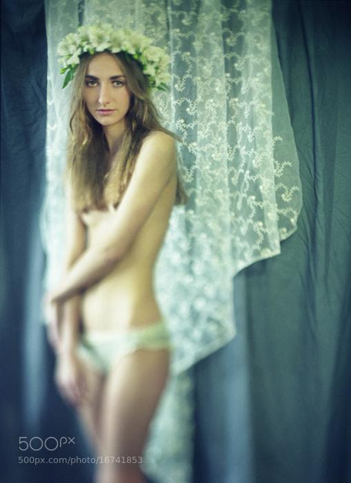 Photograph Spring Melody 3 by Furka Ishchuk-Paltseva on 500px