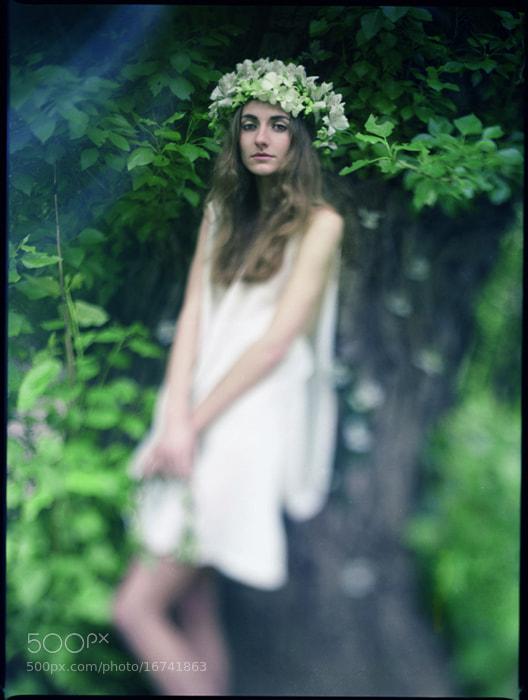 Photograph Spring Melody 2 by Furka Ishchuk-Paltseva on 500px