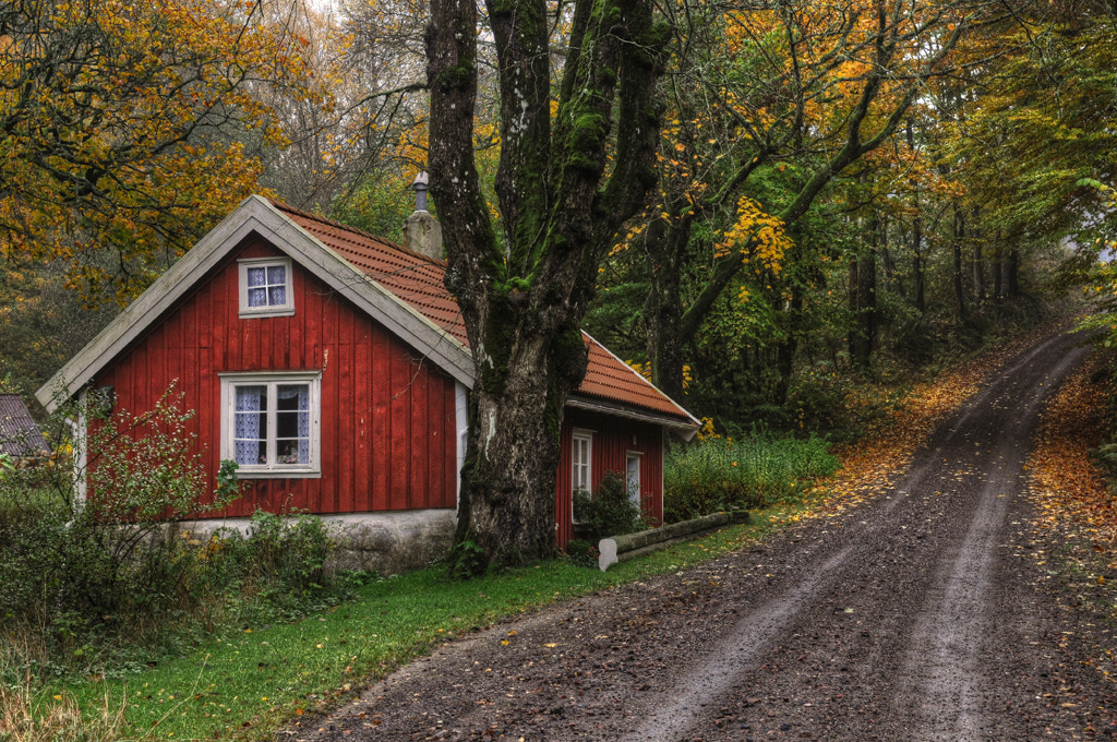 Photograph Autumn at the cottage lll... by Almqvist Photo on 500px