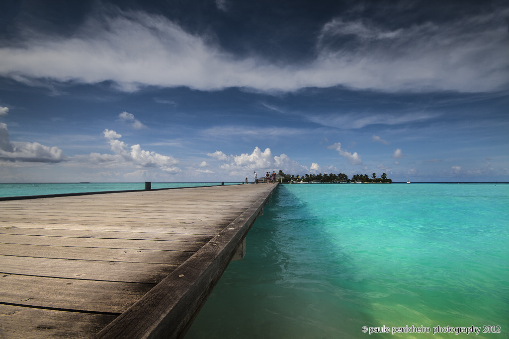 Photograph Path to Paradise by Paulo Penicheiro on 500px