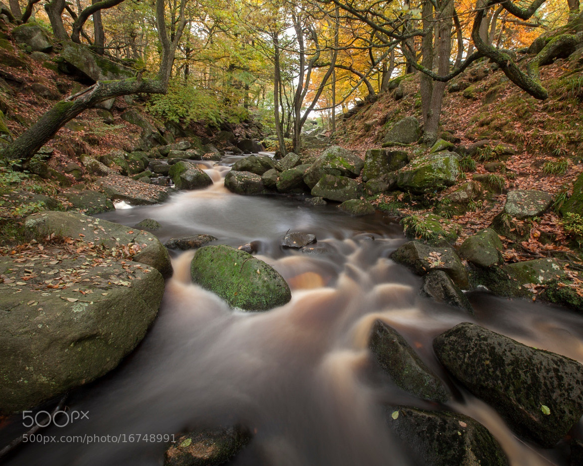 Photograph Padley autumn i by Terry Gibbins on 500px