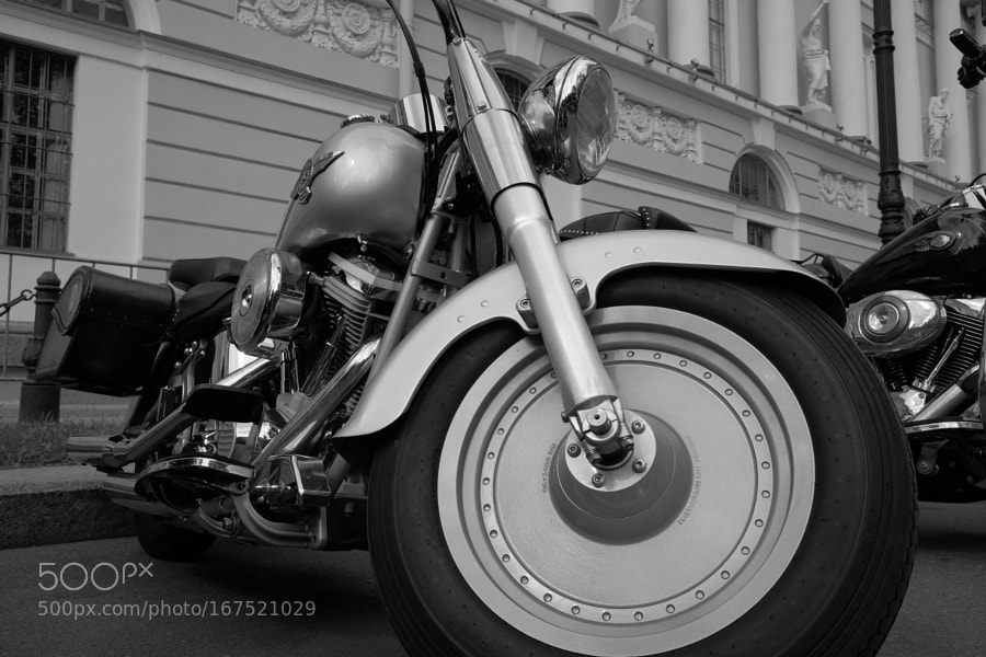 ST.PETERSBURG HARLEY DAYS