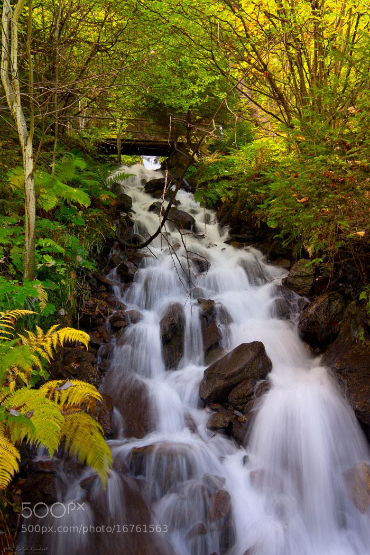 Photograph small waterfall by Ralph Reichert on 500px