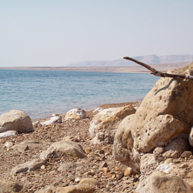 Morning by the Dead Sea