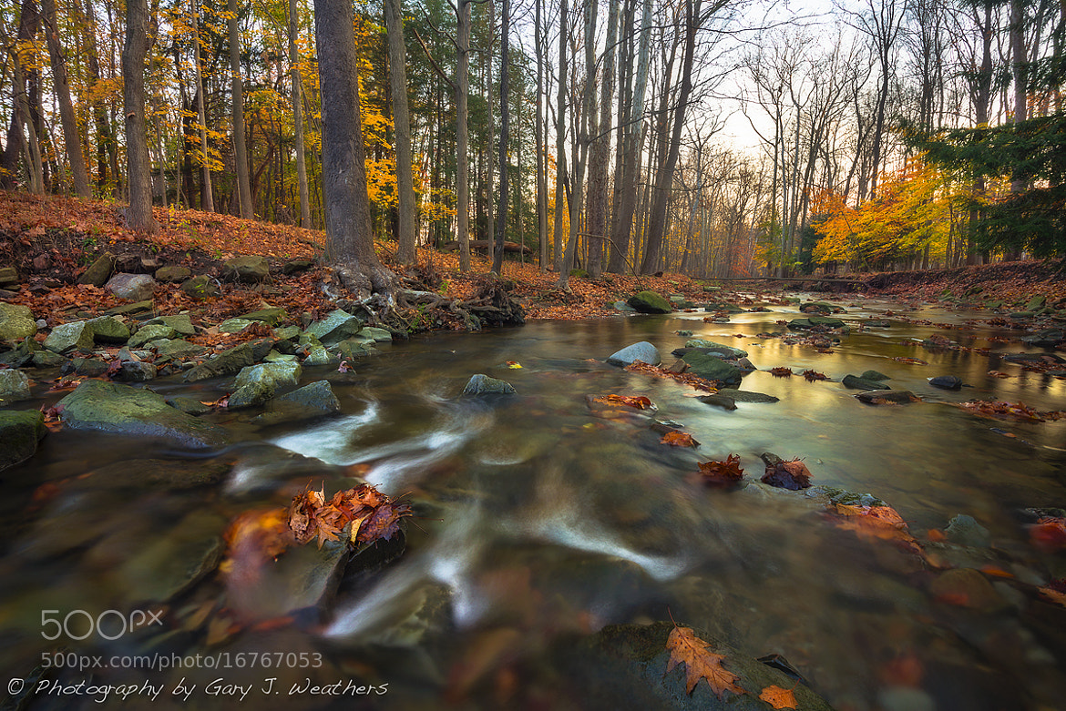 Photograph Willey Creek, Ohio by Gary Weathers on 500px