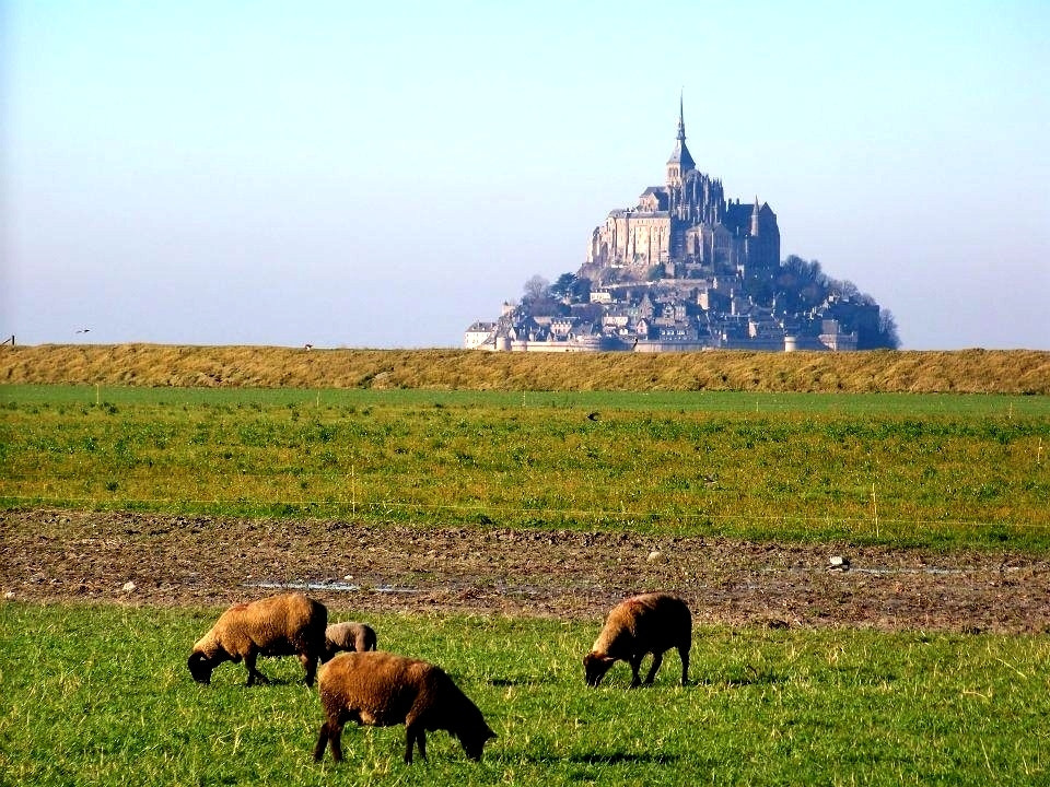 Photograph Mont Saint Michel by Risa Jenner on 500px
