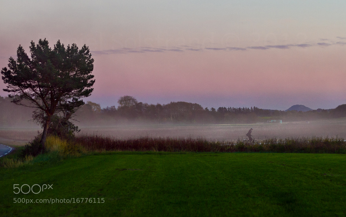 Photograph Misty by Daniel Solstrand on 500px