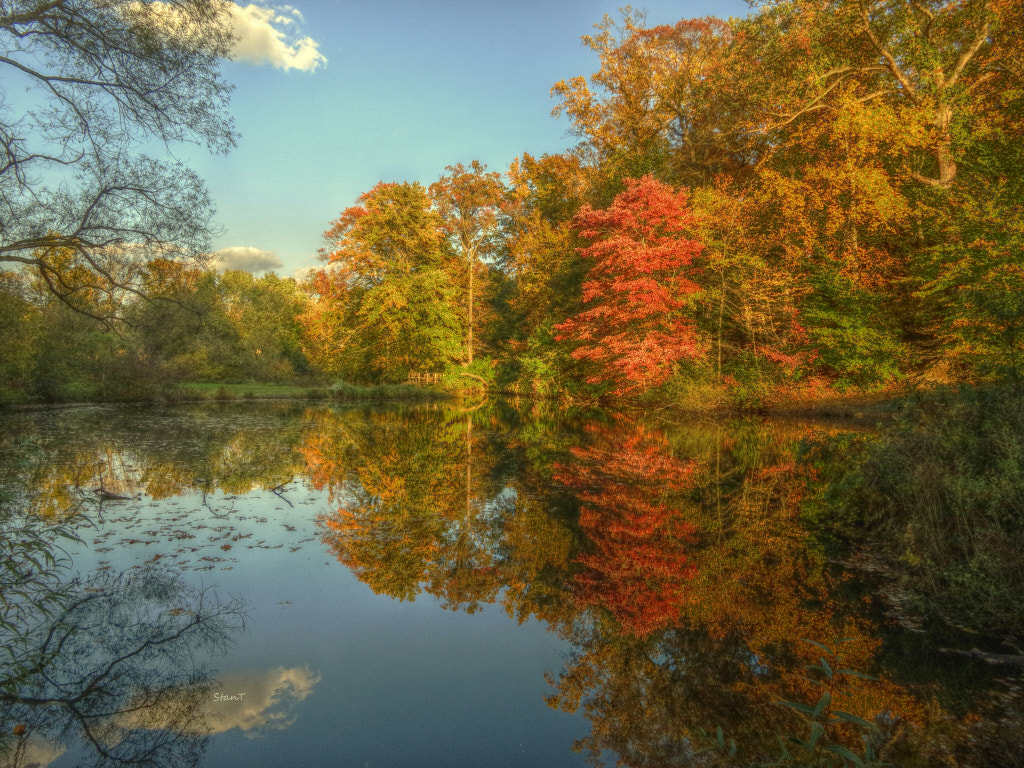 Photograph Autumn colors  by Stan Taleykis on 500px