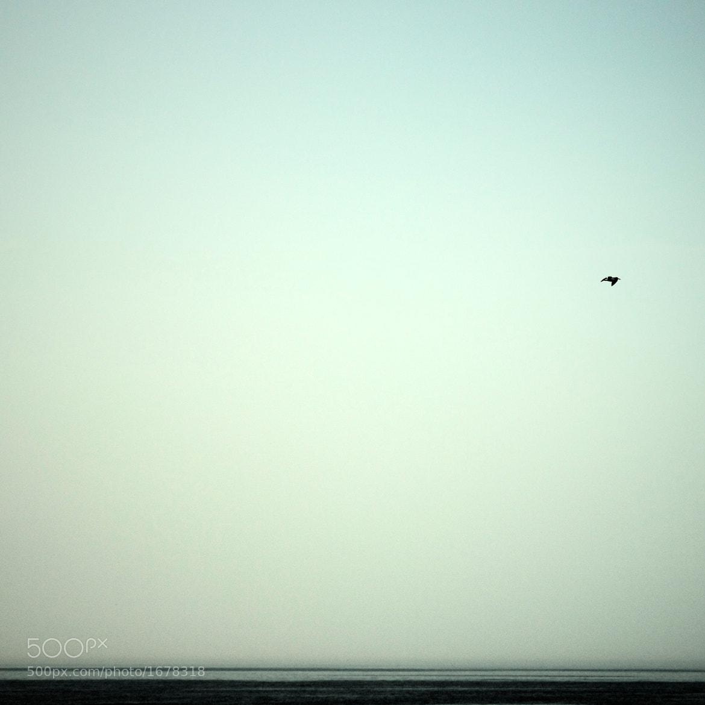 Photograph sky by Robert Ekberg on 500px