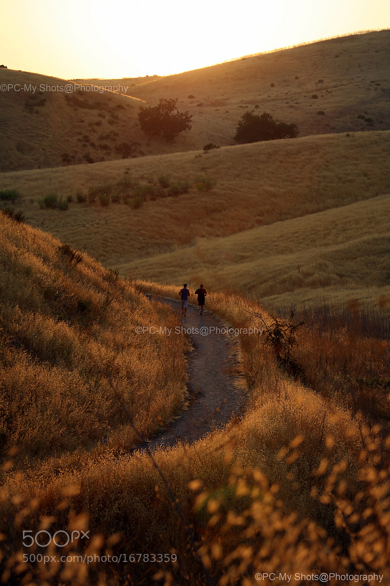 Photograph A jog in the hills by Biju Chandroth on 500px
