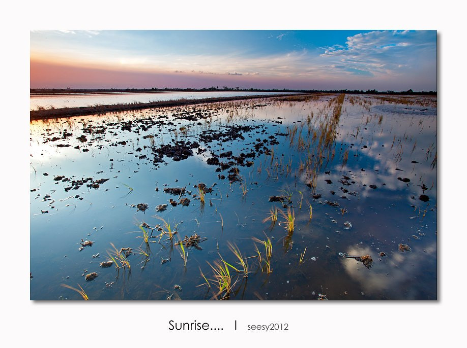 Photograph Sunrise at Sekinchan, Malaysia. by Lee Seesy on 500px