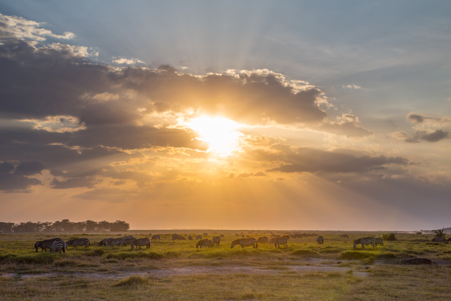 Masai Mara Sundown