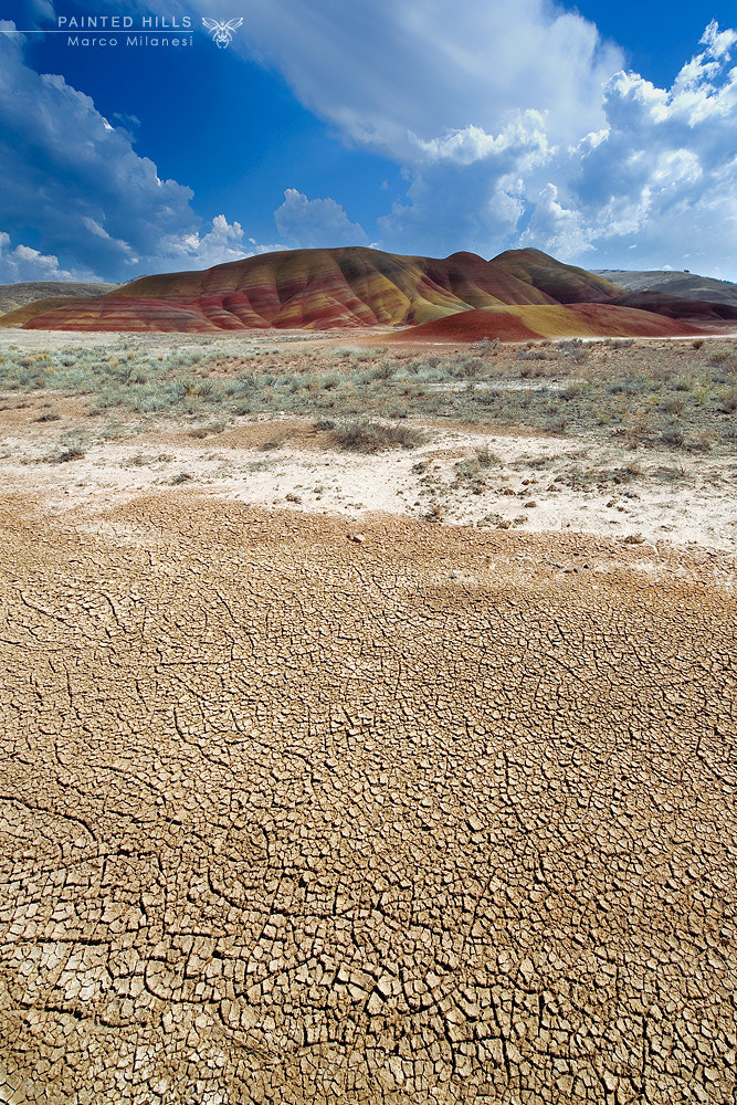 Photograph Painted Hills by Marco Milanesi on 500px