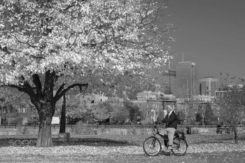Photograph Autumn Ride by Michel Desjardins on 500px
