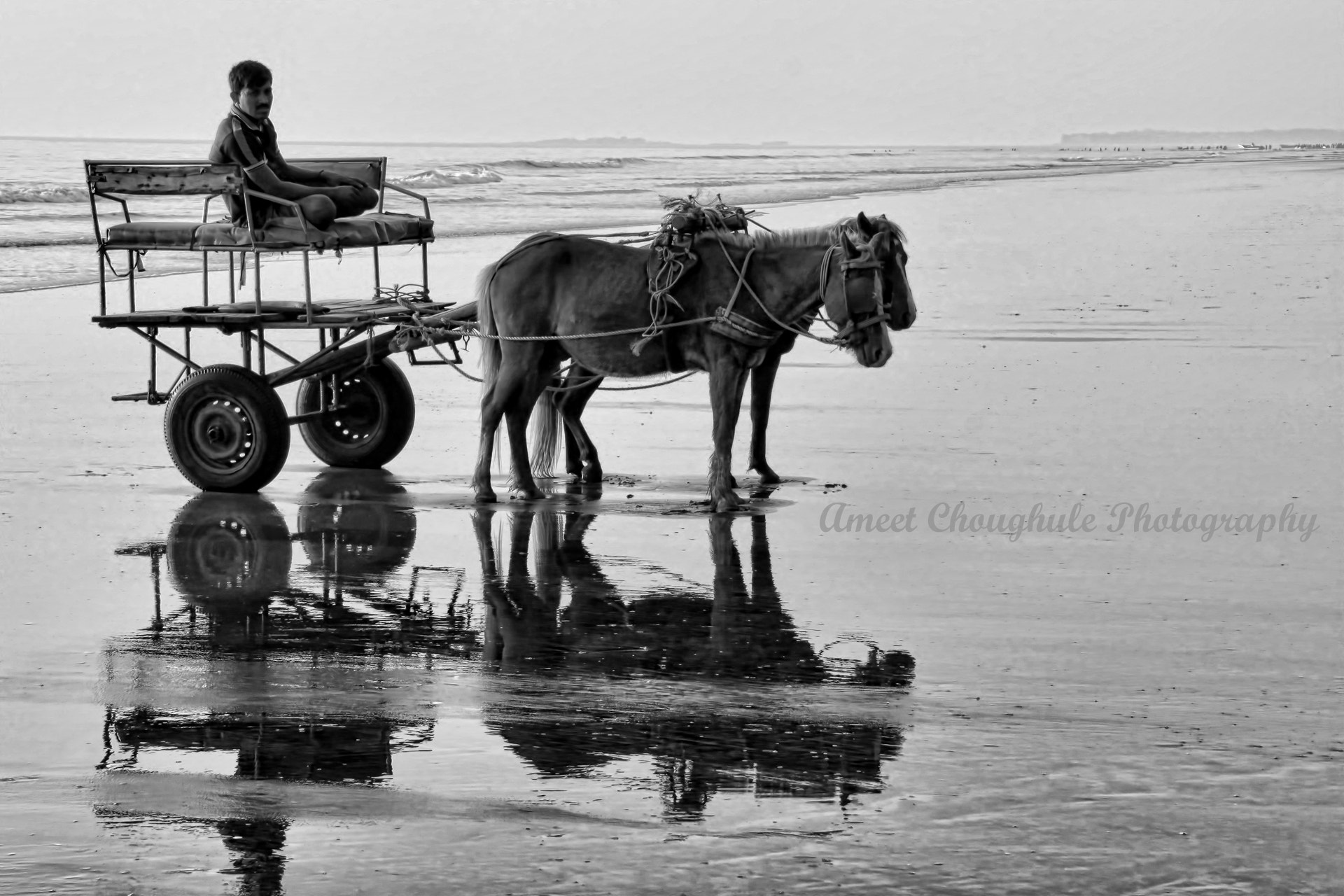 Photograph Reflections-Who feeds whom? by Ameet Choughule on 500px
