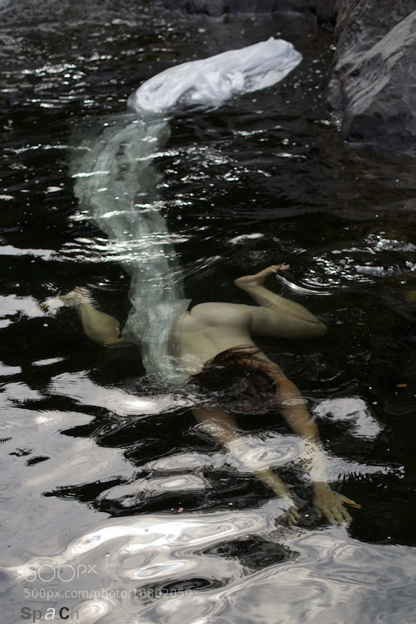 Photograph Swiming in troubles water by Fred Spach on 500px