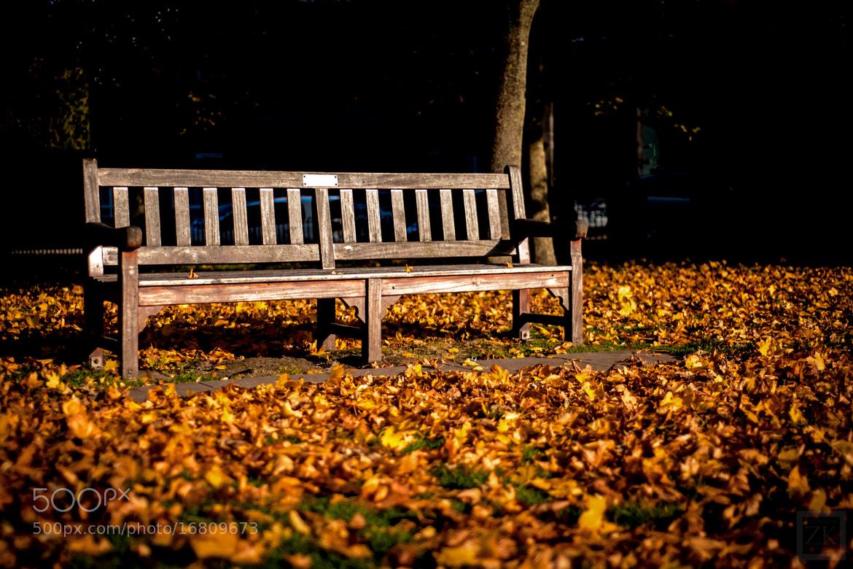 Photograph Bench by Zain Kapasi on 500px