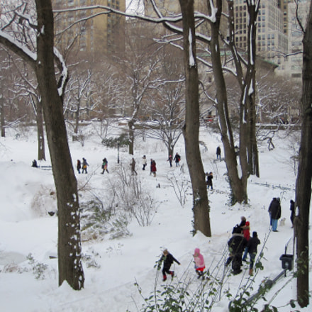 Winter Scene in Central, Canon POWERSHOT SD970 IS