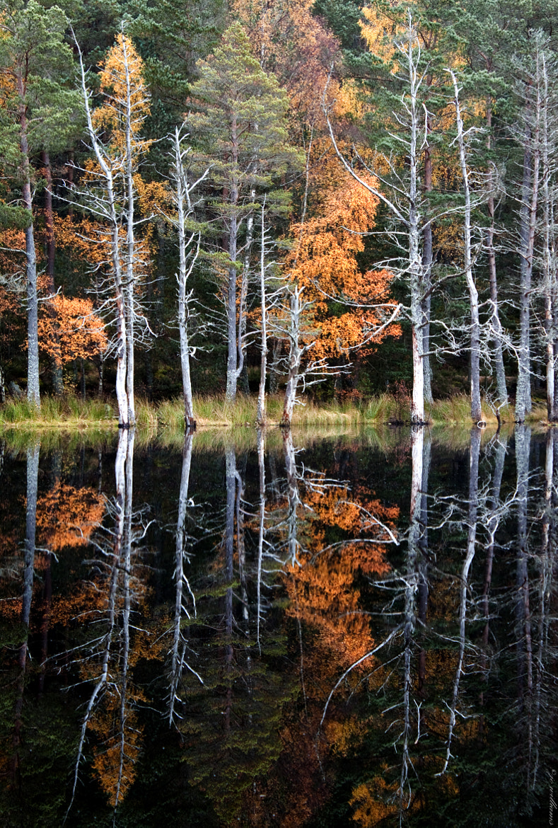 Photograph Uath Lochan by jo williams on 500px