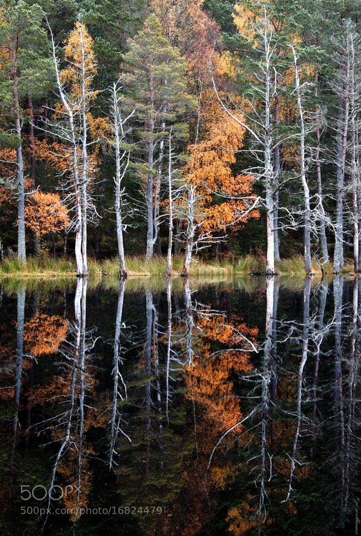 Photograph Uath Lochan by jo williams on 500px