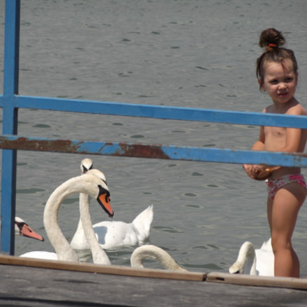 Girl and swans, Fujifilm FinePix T310