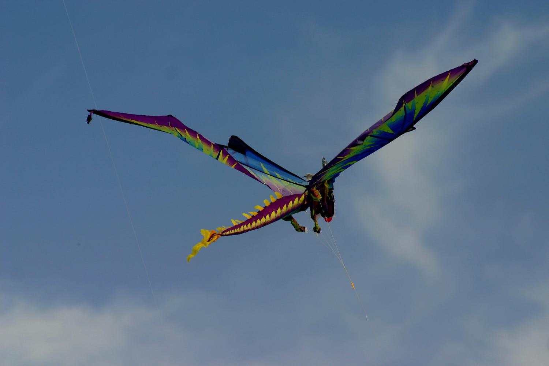 Kite Play by Madhuri Popuri / 500px