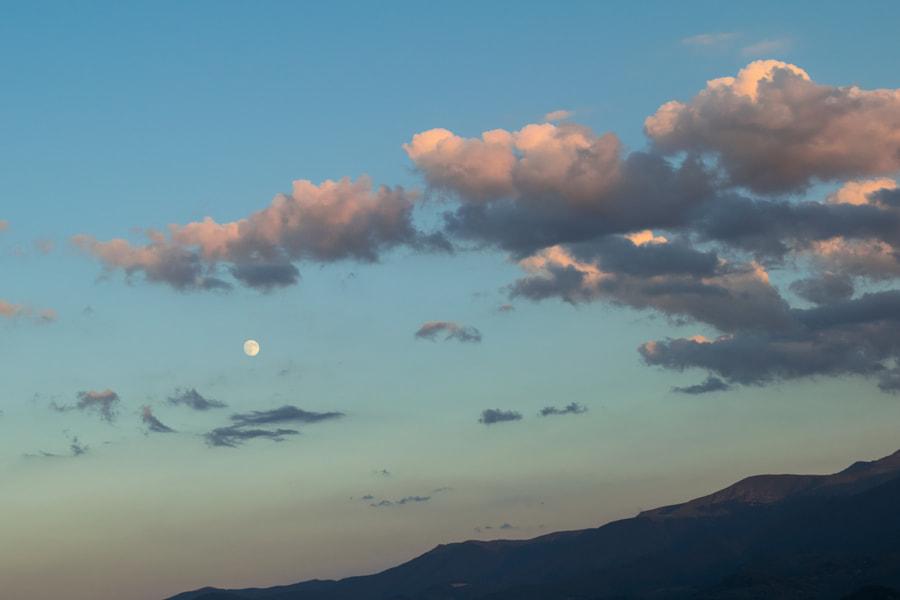 Aromahoney Sky