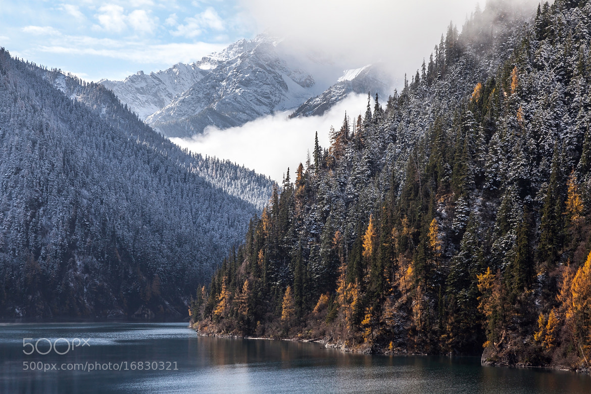 Photograph Morning mist at Long lake by Sasipa Muennuch on 500px