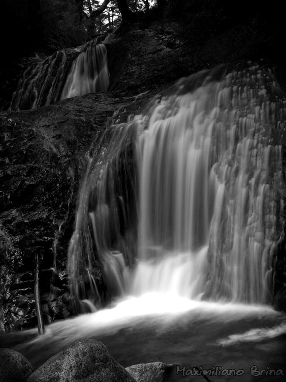 Photograph Another B&W fall by Maximiliano Brina on 500px